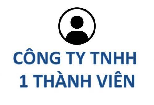 Thành lập công ty TNHH một thành viên tại Nghệ An cần thủ tục gì?